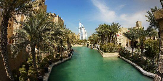 Palmeras en Dubai