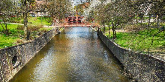 Visita guiada jardines de Oliwa Gdansk