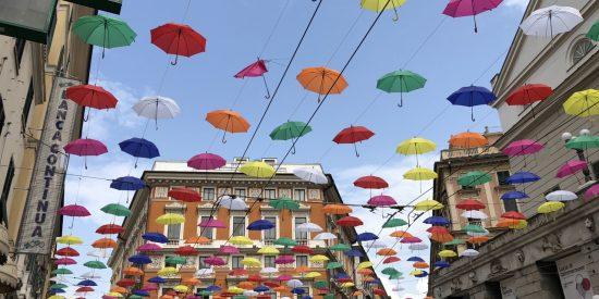 Génova paraguas para la expo del euroflora