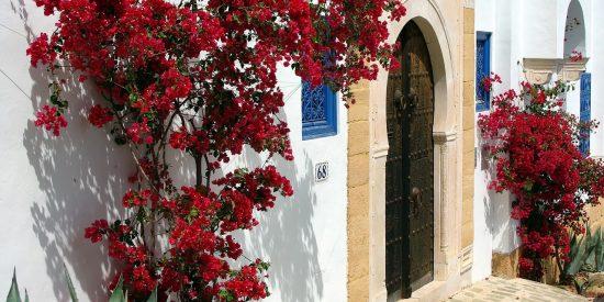 Visita guiada por las calles de Túnez