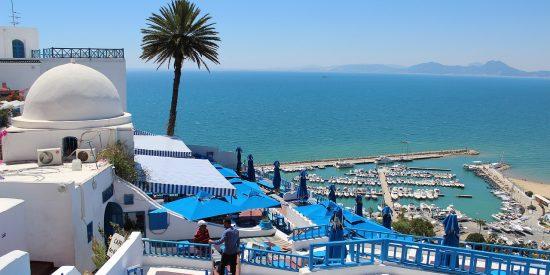 Excursión para cruceros por Túnez