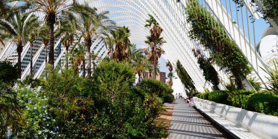 El Umbráculo en la ciudad de las artes y las ciencias en Valencia